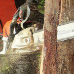 The Best Chainsaws: Ultimate Buyer's Guide