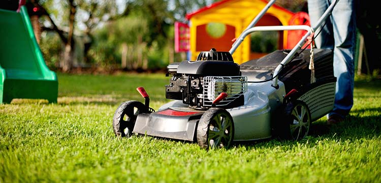 Best Push Lawn Mower Under $300